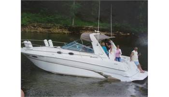 1999 290 Sundancer Series