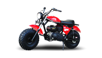 DB200  Mini Bike
