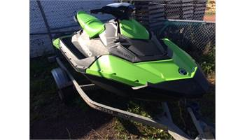 2016 Spark 2up - Rotax 900 HO ACE