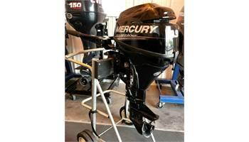 2013 FourStroke 9.9 HP - 15 in. Shaft