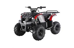 2018 125D UTILITY ATV (10 COLORS TO CHOOSE FROM)