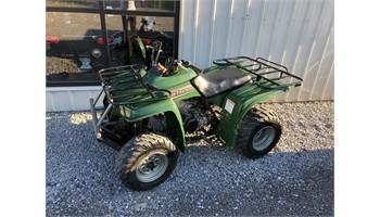 2001 Beartracker 250