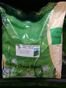 Playground Mix Grass Seed