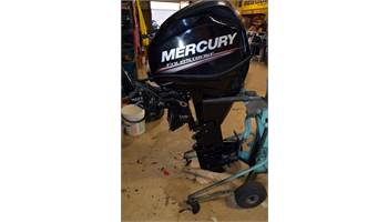 2015 FourStroke 25 HP EFI - 20 in. Shaft