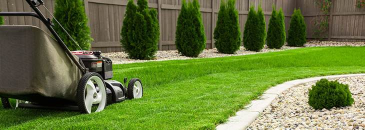 most-common-lawn-care-mistakes
