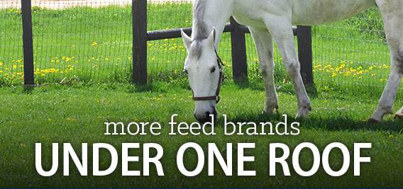 More Feed Brands Under One Roof