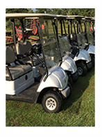Golf Carts / Utility / Food & Beverage