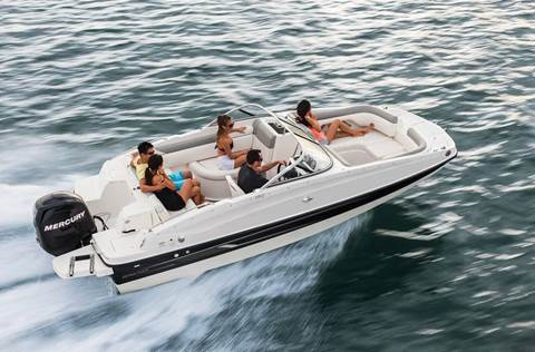Bayliner Deck Boats
