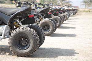 Four Wheeler for Sale in Thornville