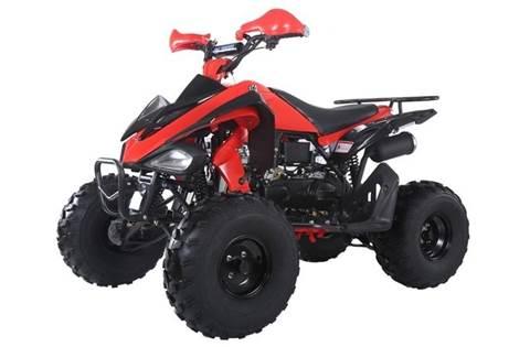 New TAOTAO ATVs Models For Sale in Walterboro, SC K & K