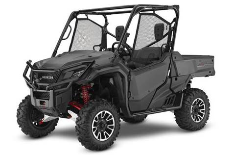 2017 Pioneer 1000 Limited Edition