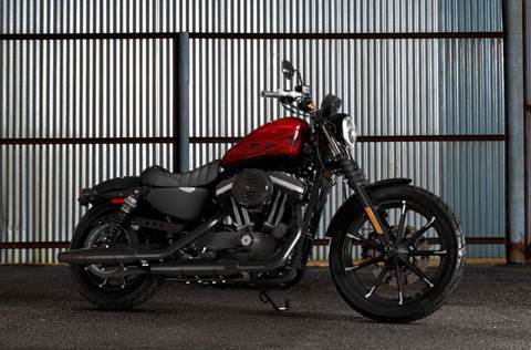 2017 XL883N Iron 883™ - Hard Candy Color Option