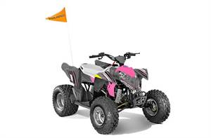 Outlaw® 110 EFI - Avalanche Grey/Pink Power