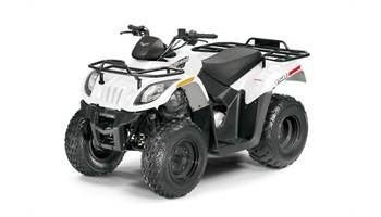 2018 Arctic Cat Alterra 150 Auto
