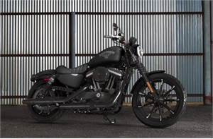 Iron 883™ - Color Option