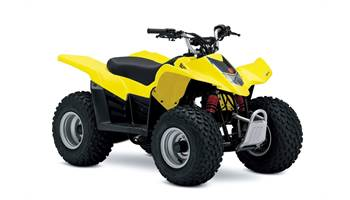 2019 QuadSport Z50