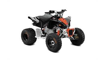 2019 ATV DS X 90-4ST B/CR 19