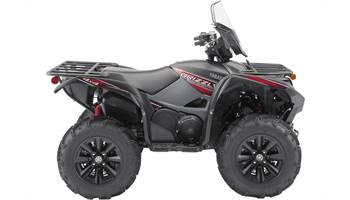 2019 Grizzly EPS LE