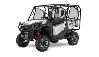 2019 PIONEER 1000-5 LIMITED EDITION