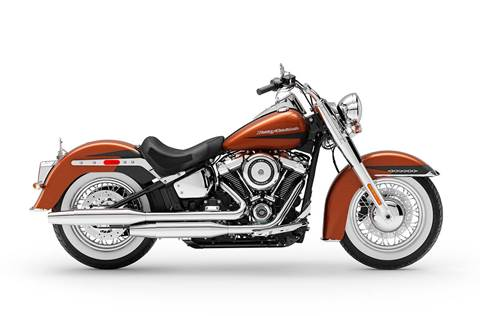 2019 Deluxe - Two-Tone Custom Option