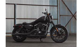 2019 Iron 883™ - Color Option