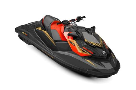 2019 RXP®-X® 300 Rotax® 1630 ACE™ Premium Color