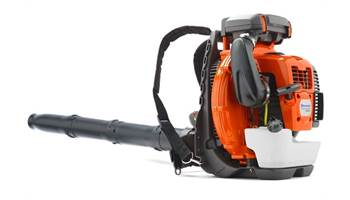 2019 580BTS Backpack Blower