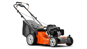 "2019 LC221RH  21"" Push Mower"