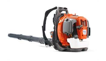 2019 560BTS Backpack Blower