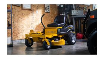 "2019 Dash™ 34"" Briggs & Stratton PowerBuilt"