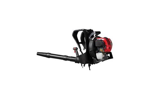 2019 TB4BP EC Backpack Gas Leaf Blower (41BR4BEG766)