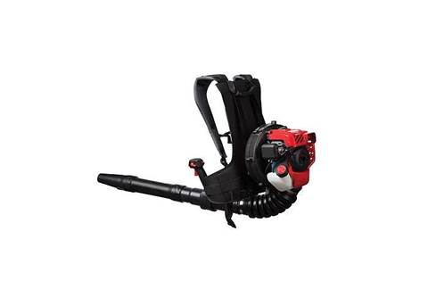 2019 TB2BP EC Backpack Gas Leaf Blower (41BR2BEG766)