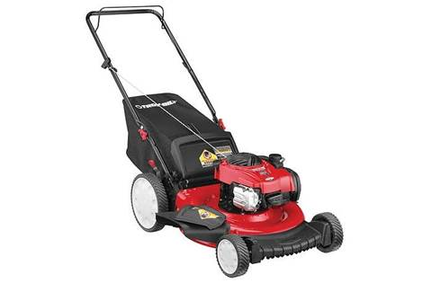 2019 TB140 Push Behind Mower (11A-B2BM766)
