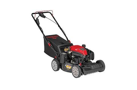2019 TB290 ES Self-Propelled Mower with Electric Start (12AGA2MT766)