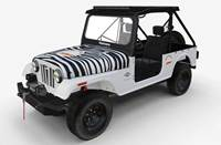 2019 Mahindra ROXOR Nugent Package