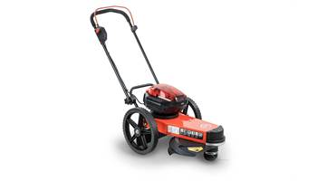 2019 524340 DR Trimmer/Mower w/2 Batteries