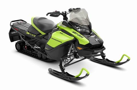2020 Renegade® Adrenaline 900 ACE™ Manta Green/Black