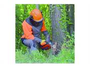 Stock Image: MMT 3600 Top Handle Chainsaw