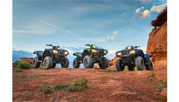 2020 FourTrax Rancher 4x4 DCT EPS