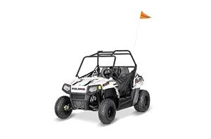 RZR® 170 EFI - Bright White/Indy Red