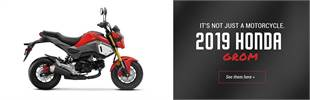 2019 Honda Grom: Click here to view the models.