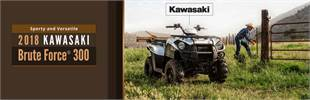 2018 Kawasaki Brute Force® 300: Click here to view the model.
