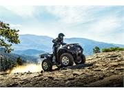 2018 Kawasaki Brute Force 750 EPS (5)