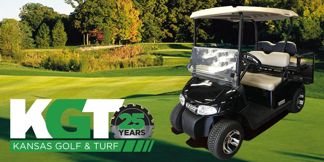Top 6 Questions to Ask When Buying a Used Golf Cart - Used 2010 EZGO RXV Electic Golf Cart