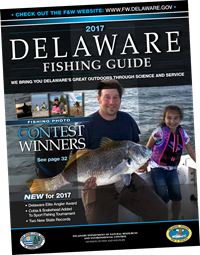 Delaware Fishing Guide