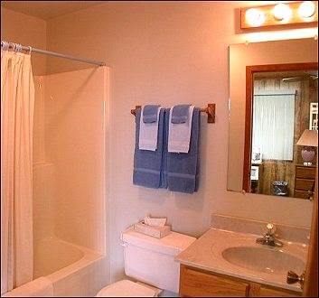 Bathroom shower tub
