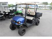 2019 Cushman 1200x EFI Gas Electric Blue(2)