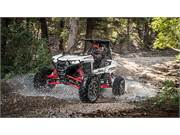 2019 Polaris RZR RS1 (12)