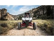 2019 Polaris RZR RS1 (5)