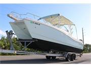 2016 World Cat Dual Console 255DC (2)